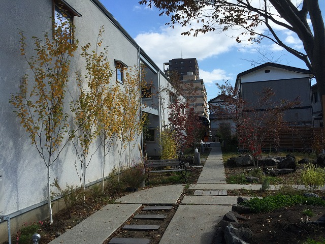 murakami garden.jpg